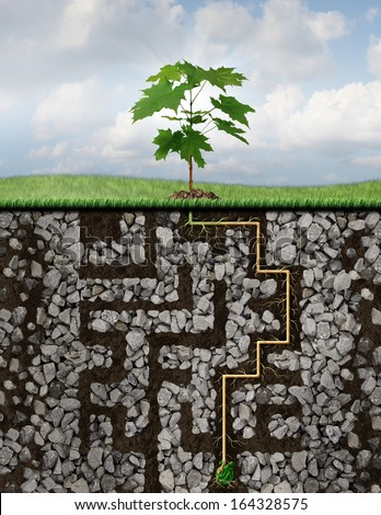 Growth solutions business concept as a metaphor with a tree emerging from a seed sprouting roots that have journeyed a challenging maze or labyrinth of underground rocks to reach financial success. - stock photo