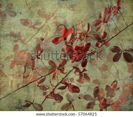 Grunge Antique Flower Background - stock photo