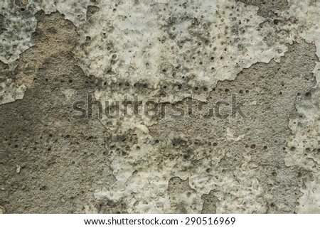 Grunge Background. Brick wall with the whitewash falling off fragment as a background texture - stock photo