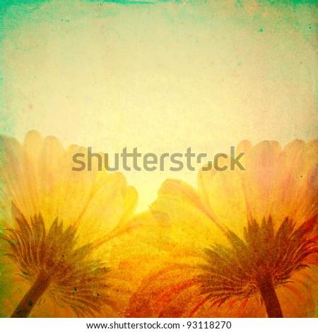 Grunge background, gerbera flowers - stock photo