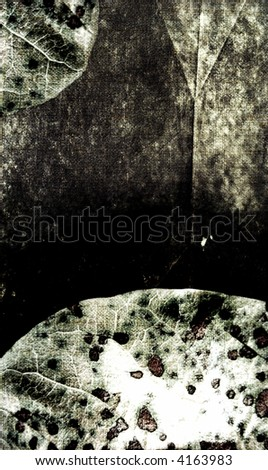 grunge background- nature - stock photo