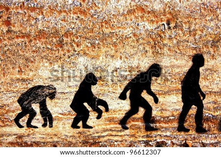 grunge background of human evolution - stock photo