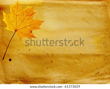 Grunge background with autumn leaves. Paper texture
