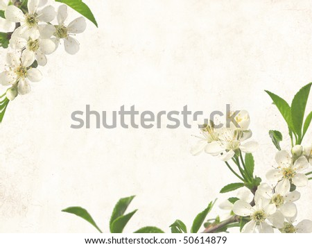 Grunge background with flowers of cherry