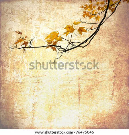 Grunge background with maple branches - stock photo