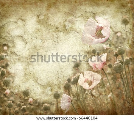 Grunge background with poppies in vintage style - stock photo