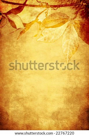Grunge background with vine leaves