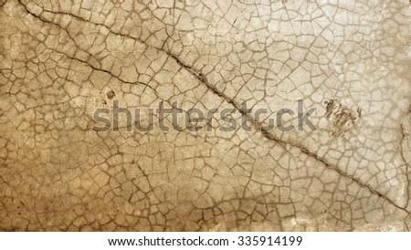 Grunge cement wall