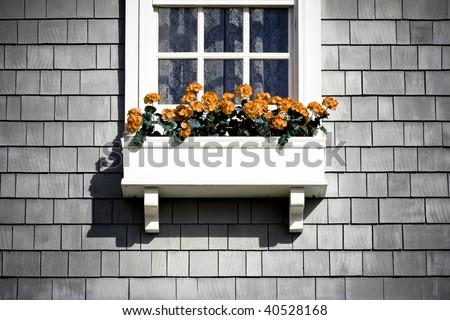 Grunge Flower Box - stock photo