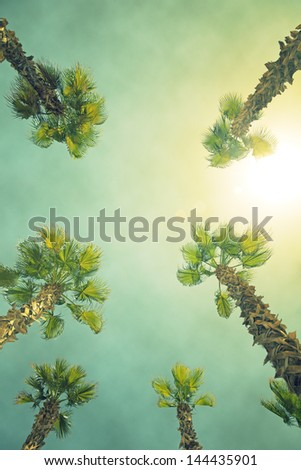 Grunge image of palm tree. Focus on the leaves