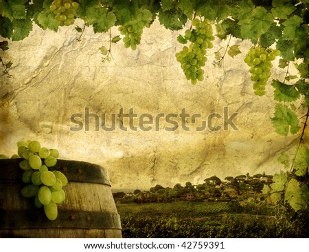Grunge image of wine grapes and vineyard - stock photo