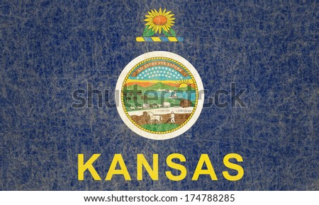 Grunge Kansas state Flag - stock photo