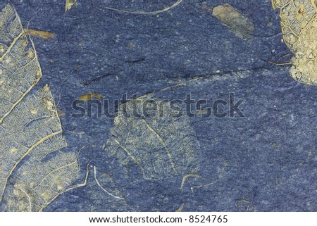Grunge leaf texture - stock photo