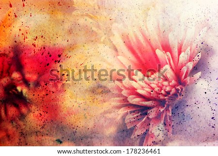 grunge messy artwork with lovely pink flower and watercolor splatter - stock photo