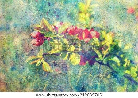 grunge messy watercolor splashes and branch with red flowers  - stock photo