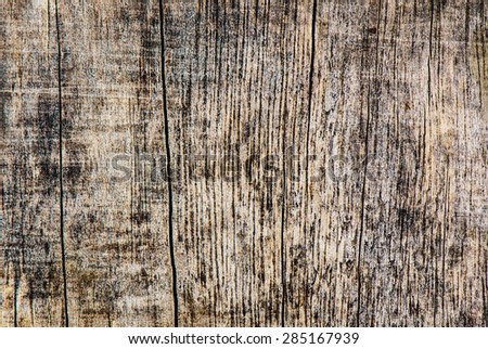 Grunge old wood texture or background, natural wood pattern ,close-up. - stock photo