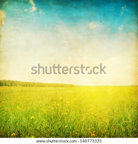 Grunge photo of summer field and blue sky. - stock photo