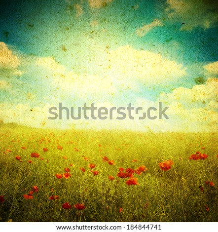 Grunge poppies background  - stock photo