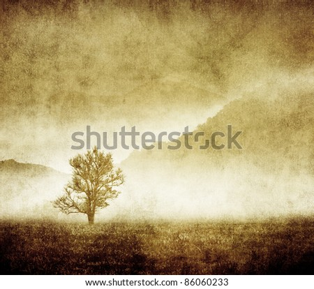 grunge scary tree background for halloween concept - stock photo