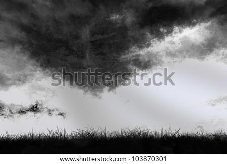 Grunge silhouette grass background - stock photo