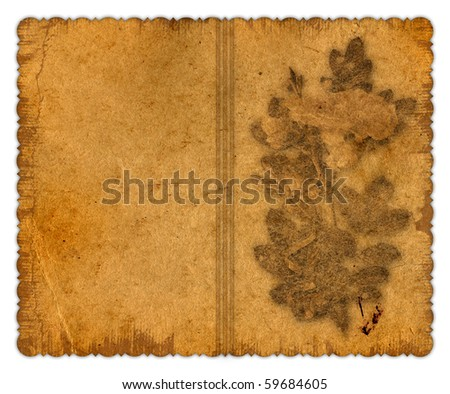 Grunge vintage framework for greeting or invitation on a white background. - stock photo