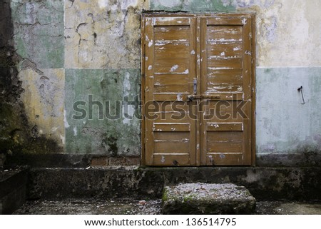 Grunge wall with an old wood door
