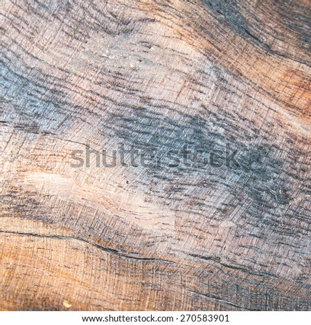 grunge wood texture background  - stock photo