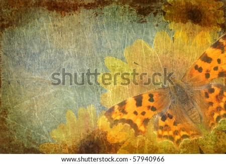 grungy background with calendula flowers and butterfly - stock photo