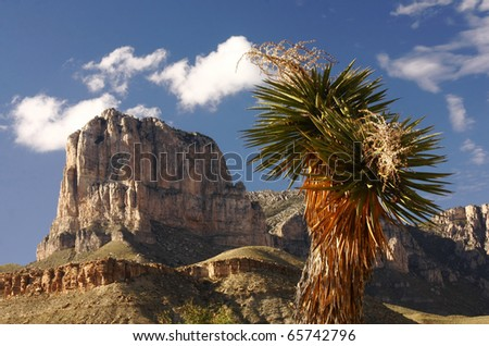Guadalupe Mountain National Park Southwest Texas - stock photo