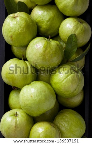 guava fruit. - stock photo