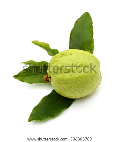 Guava fruit isolated on the white background .