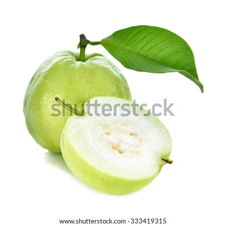 Goyave banque dimages dimages et dimages vectorielles libres guava tropical fruit on white background ccuart Image collections