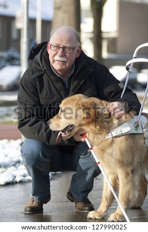 Guide dog is helping a blind man. - stock photo
