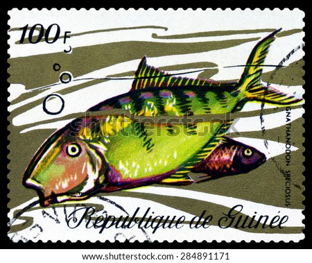 GUINEA - CIRCA 1971: a stamp printed by Guinea show the fishes Gnathanodon speciosus, circa 1971 - stock photo