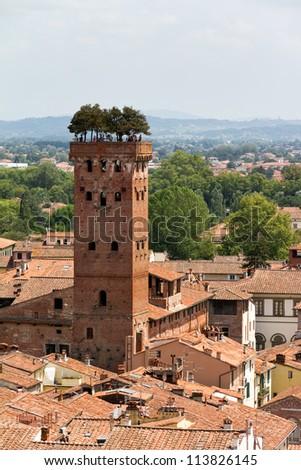 Guinigi tower in Lucca, Italy - stock photo