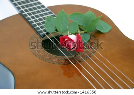 guitar and rose - stock photo