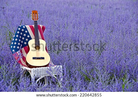 guitar on American flag in purple Russian sage - stock photo