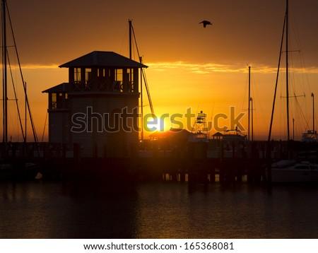 Gulfport Marina Small Craft Harbor Dock with Flying Pelican at Sunrise - stock photo