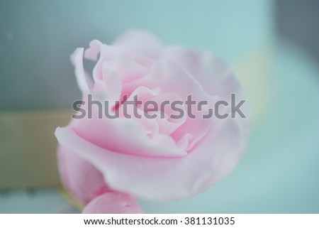 Gum paste pink rose on wedding fondant cake - stock photo