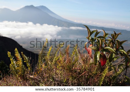 Gunung Batur volcano in Indonesia - stock photo