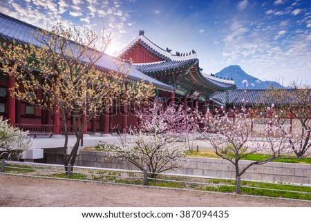 gyeongbokgung palace in spring, South Korea. - stock photo