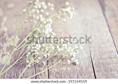 Gypsophila flowers on wooden background - stock photo