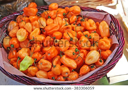 Habanero peppers in a basket