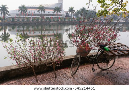 HAI DUONG, Vietnam, December 30, 2106 bicycles, people in rural areas Gia Loc, Hai Duong province, selling peach blossom, on the occasion of the spring sale