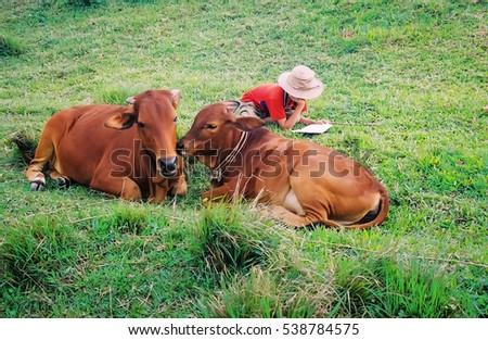 HAI DUONG, Vietnam, November 12, 2016 boys, rural Hai Duong, Vietnam, reading stories, jobs grazing cows
