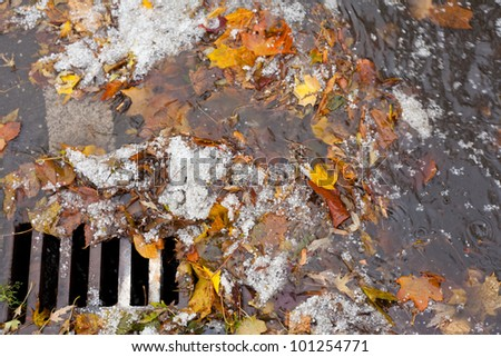 Hail, fall leaves and debris block up sewer hole restricting runoff flow. - stock photo