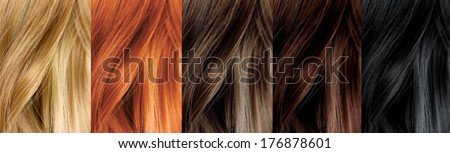 Hair Color Samples - stock photo