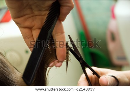 Hair cutting: hair stylist at work with scissors