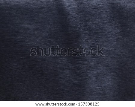 Hair of a cow texture - stock photo