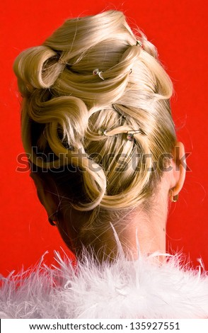 Hairdress on red background, the rear view